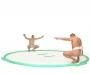 Mata sumo (dohyo)